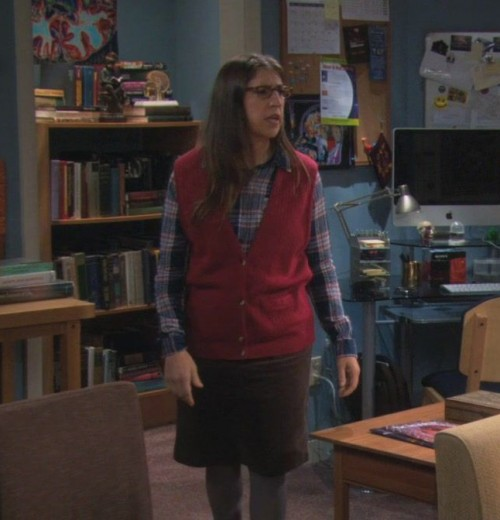 Amys red vest over a blue plaid shirt