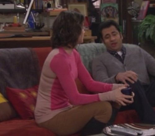 Robins pink color block sweater on HIMYM