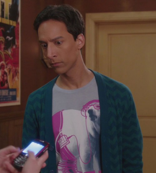 Abed's polar bear shirt on Community