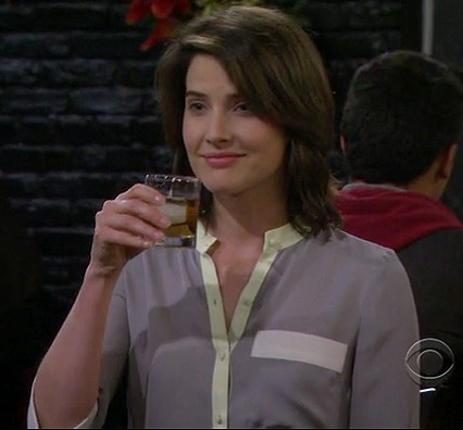 Robin's grey/mint contrast blouse on How I Met Your Mother