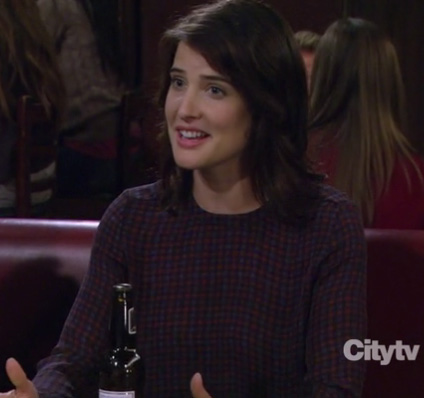 Robin's red longsleeve check print blouse on How I Met Your Mother