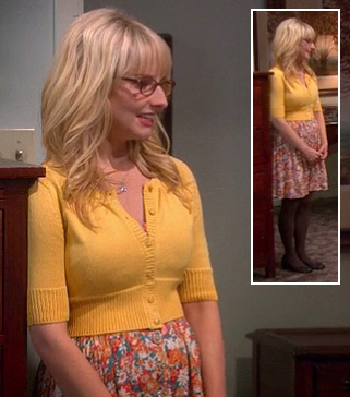 Bernadette's brown tights and flats on The Big Bang Theory
