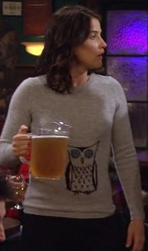 Robin's grey pullover with an owl on it on HIMYM Season 8