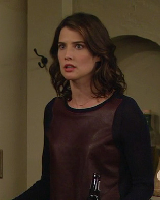 Robin's navy sweater with burgundy leather front on How I Met Your Mother