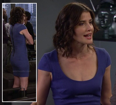 Robin's blue cap sleeve dress with exposed zip on How I Met Your Mother