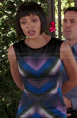 Camille's purple and blue chevron/dot patterned dress on Bones
