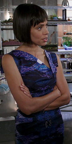 Camille's blue and purple printed dress with asymmetrical neckline on Bones