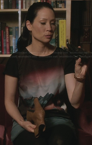 Joan's mountain scenery graphic dress on Elementary