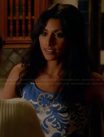Divya's blue and white patterned dress on Royal Pains