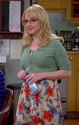 Bernadette's blue and red floral dress on The Big Bang Theory