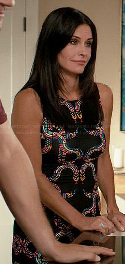Jules's multi colored snakes print dress on Cougar Town