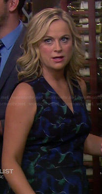 Leslie's navy and green patterned v-neck dress on Parks and Recreation