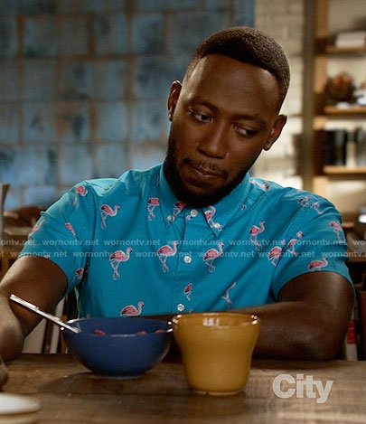 Winston's blue flamingo print shirt on New Girl