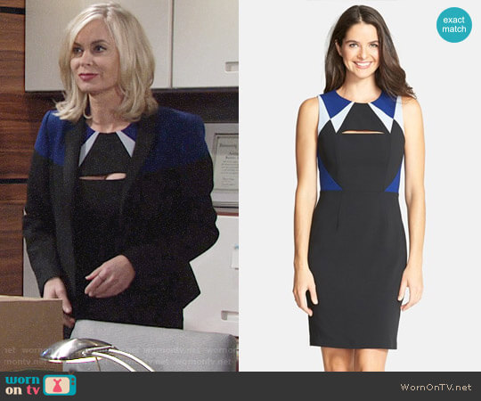Bcbgmaxazria Karin Dress worn by Eileen Davidson on The Young & the Restless