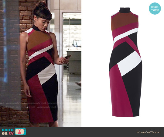 Karen Millen Graphic Paneled Pencil Dress worn by Tamara Taylor on Bones