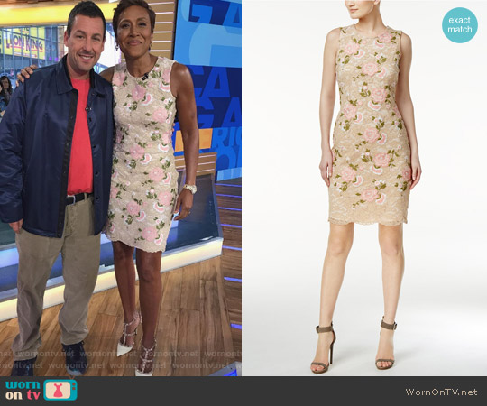 Embroidered Lace Sheath Dress by Calvin Klein worn by Robin Roberts (Robin Roberts) on Good Morning America