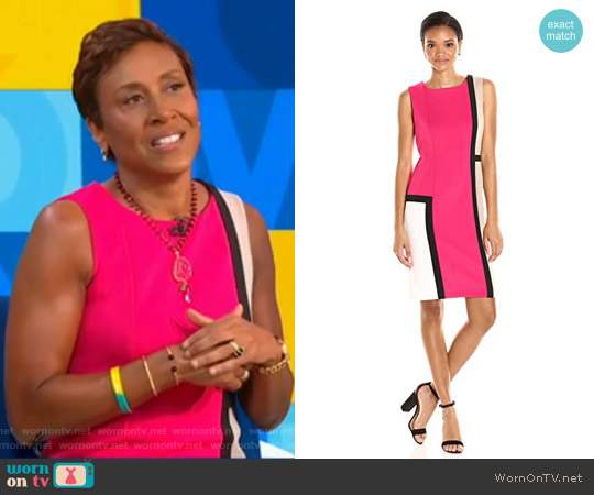 Sleeveless Round Neck Color Block Sheath Dress by Calvin Klein worn by Robin Roberts  on Good Morning America