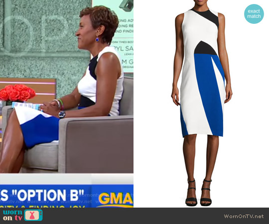 Colorblock Crepe Sleeveless Sheath Dress by Narciso Rodriguez worn by Robin Roberts on Good Morning America
