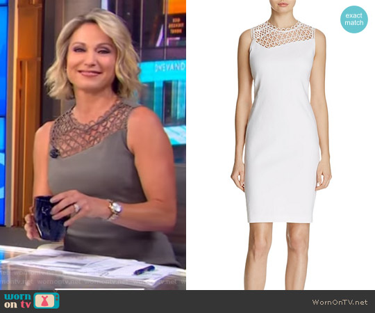 Tina Sleeveless Dress by Elie Tahari worn by Amy Robach on Good Morning America