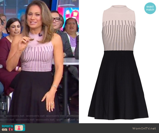 Pink Stripe Flare Dress by Milly worn by Ginger Zee on Good Morning America