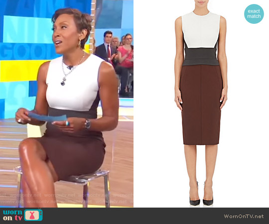 Colorblocked Sheath Dress by Narciso Rodriguez worn by Robin Roberts on Good Morning America