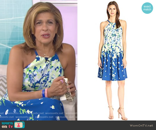 Garden Party Placed Floral Print Dress by Adrianna Papell worn by Hoda Kotb (Hoda Kotb) on Today