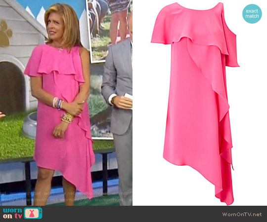 Gauzy Crepe One Shoulder Shift Dress by Adrianna Papell worn by Hoda Kotb on Today