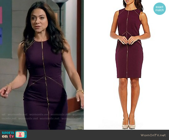 Calvin Klein Zipper Detail Lux Sheath Dress worn by Nina Sandoval (Camille Guaty) on Daytime Divas