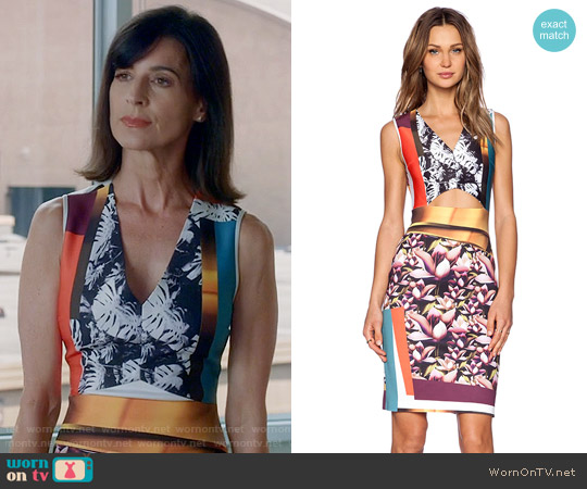 Clover Canyon Chrome Divide Dress worn by Perrey Reeves on Famous in Love