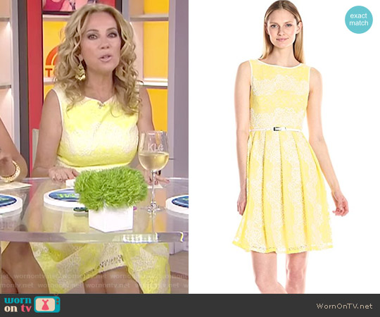 Fit and Flare Lace Dress by Adrianna Papell worn by Kathie Lee Gifford  on Today