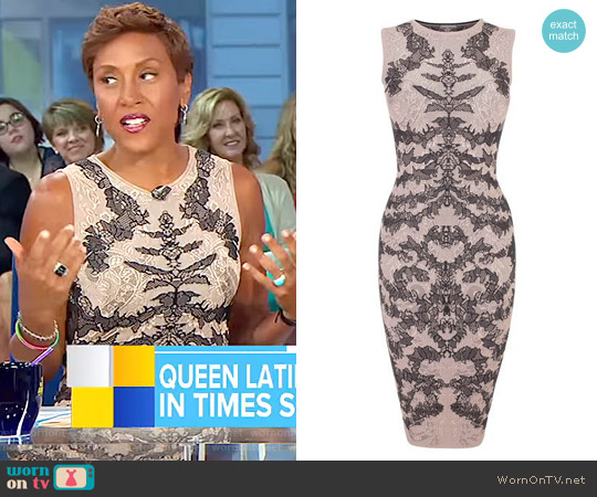 Bi-Colour Spine Lace Jacquard Pencil Dress by Alexander Mcqueen worn by Robin Roberts  on Good Morning America