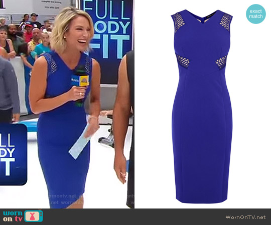 Lace Panel Pencil Dress by Karen Millen worn by Amy Robach on Good Morning America
