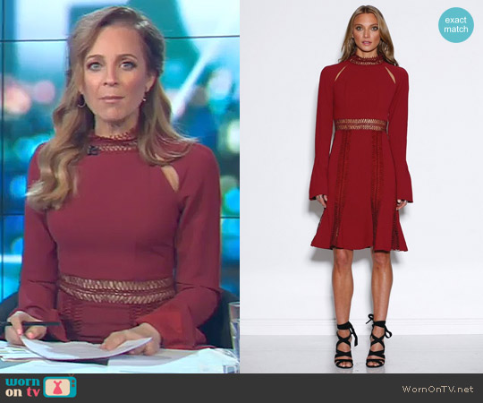 Azzedine Dress by Ministry Of Style worn by Carrie Bickmore on The Project