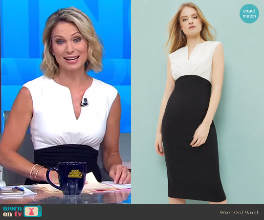 'Adeba' Colour Block Pencil Dress by Ted Baker worn by Amy Robach  on Good Morning America
