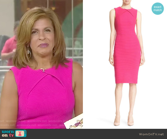 'Tarala' Body-Con Knit Midi Dress by Ted Baker worn by Hoda Kotb on Today