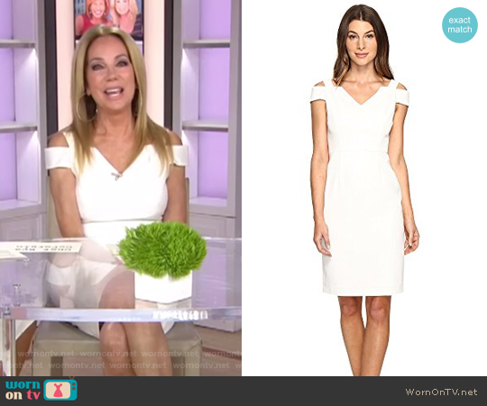 Cold Shoulder Fitted Sheath by Adrianna Papell worn by Kathie Lee Gifford on Today
