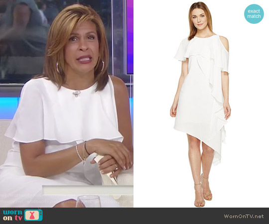 Novelty Gauzy Crepe Cold Shoulder Asymmetric Dress by Adrianna Papell worn by Hoda Kotb on Today