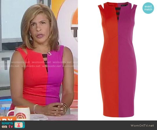 Dress: Two Tone Pencil Dress by Karen Millen worn by Hoda Kotb  on Today