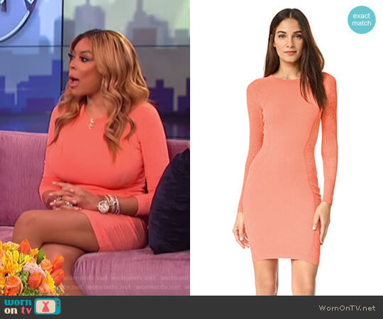 Knit Dress By Versace Worn Wendy Williams On The Show