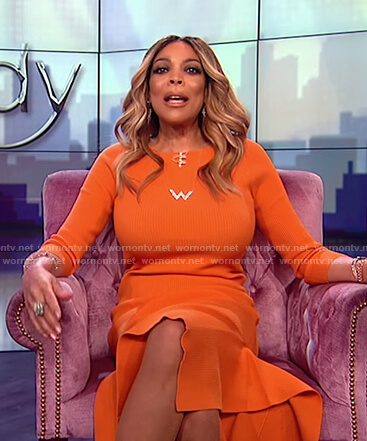 Wendy's orange ribbed long sleeve dress on The Wendy Williams Show