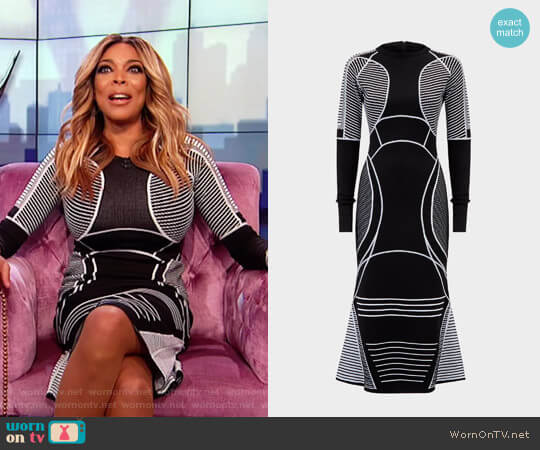 Defining Lines Knit dress by Versace worn by Wendy Williams on The Wendy Williams Show