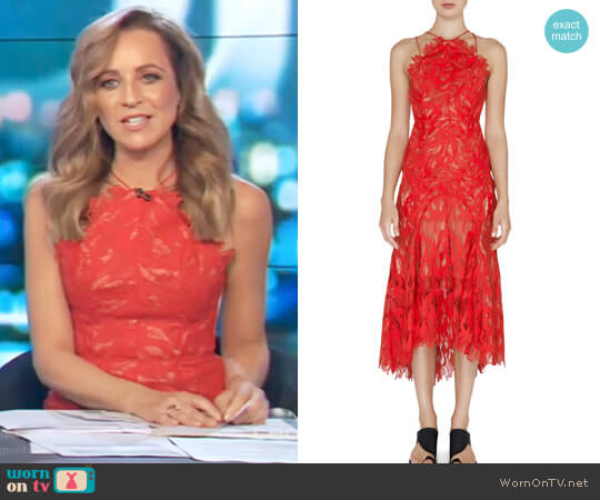 Addison Dress by Acler worn by Carrie Bickmore on The Project