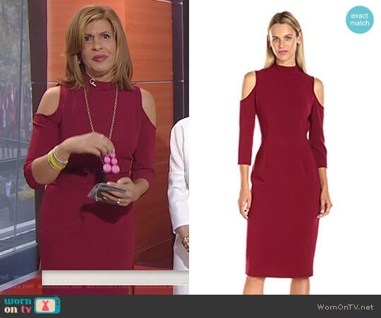 'Sergia' Sheath Dress by Black Halo worn by Hoda Kotb on Today