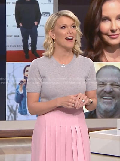Megyn's pink pleated skirt on Megyn Kelly Today