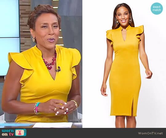 7th Avenue Ruffled V-Neck Sheath Dress by New York & Company worn by Robin Roberts on Good Morning America