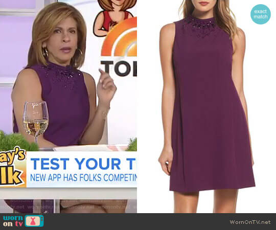 Beaded Trapeze Dress by Adrianna Papell worn by Hoda Kotb  on Today