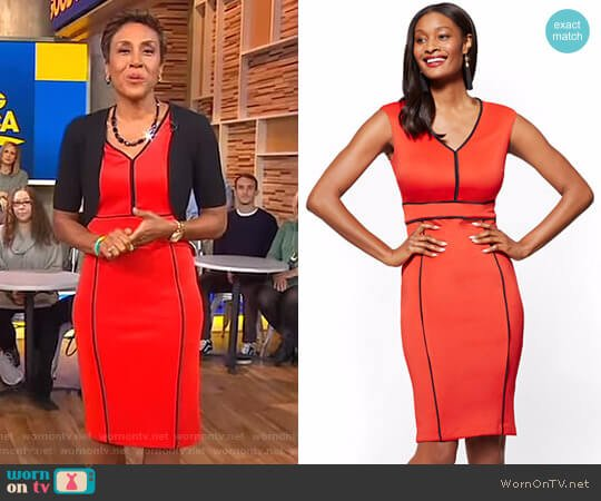 Piped V-Neck Sheath Dress by New York & Company worn by Robin Roberts (Robin Roberts) on Good Morning America