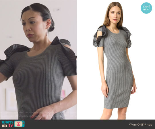 Ruffle Sleeve Dress by Opening Ceremony worn by Brittany Ishibashi on Marvels Runaways