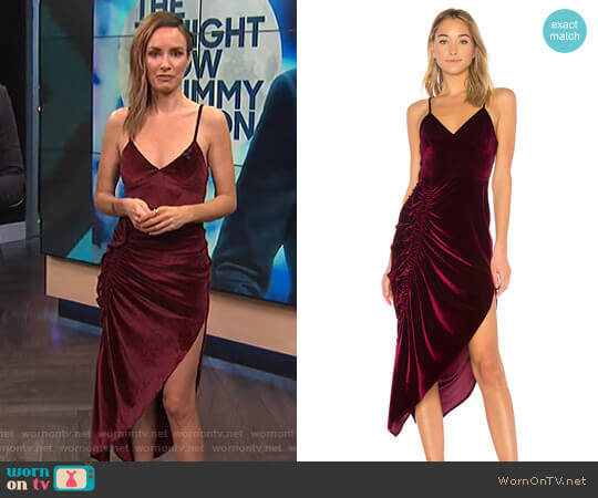 Ahn Velvet Dress by Ronny Kobo worn by Catt Sadler  on E! News