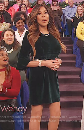 Wendy's green velvet bell sleeve dress on The Wendy Williams Show